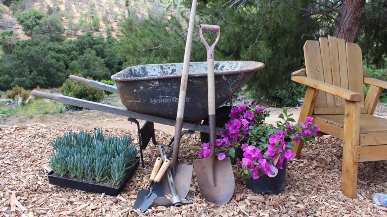 Bmlx2lewroahzalydh61 cultivated artist   wheelbarrow