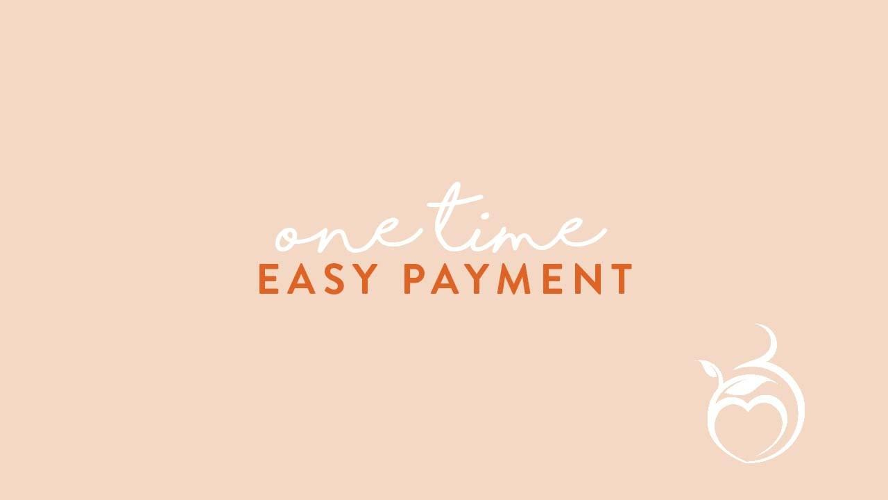J0s7dovsrv2d4jbj5mb8 one time easy payment image