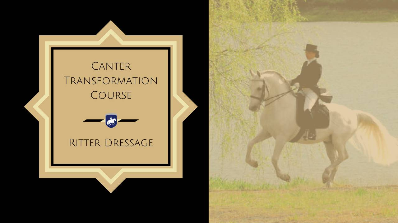 July 16- Oct 7, 2018 CANTER TRANSFORMATION COURSE