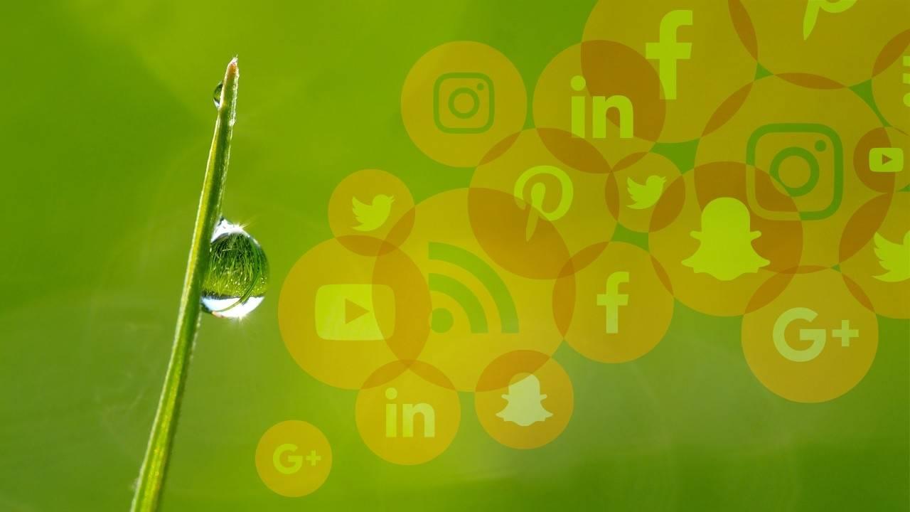 Digital Marketing Strategy Training Social Media Content Marketing