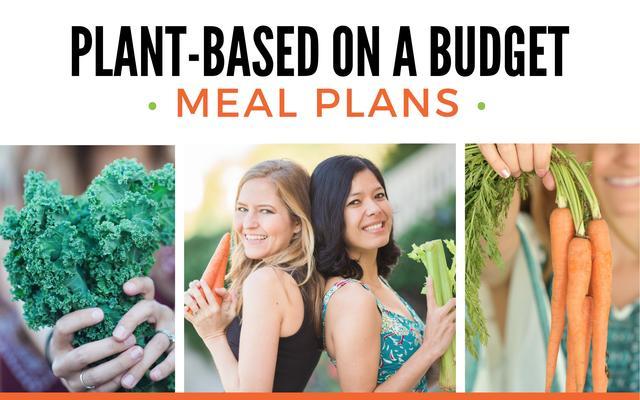 R28lb7zsngj0cqge1ivw meal plan header large