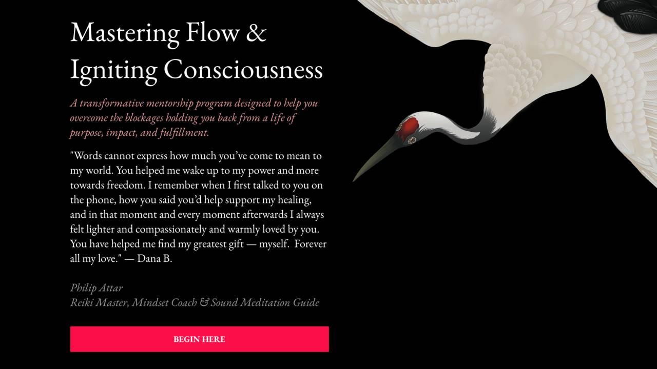 Philip Attar's Mastering Flow & Igniting Consciousness