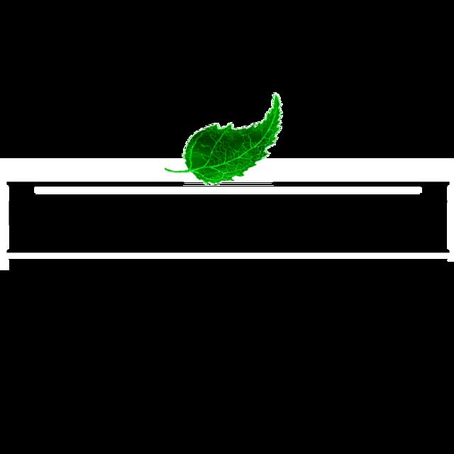 Wi7ruzvtmsnn8diqumy2 d tox academy logo 898x898 3