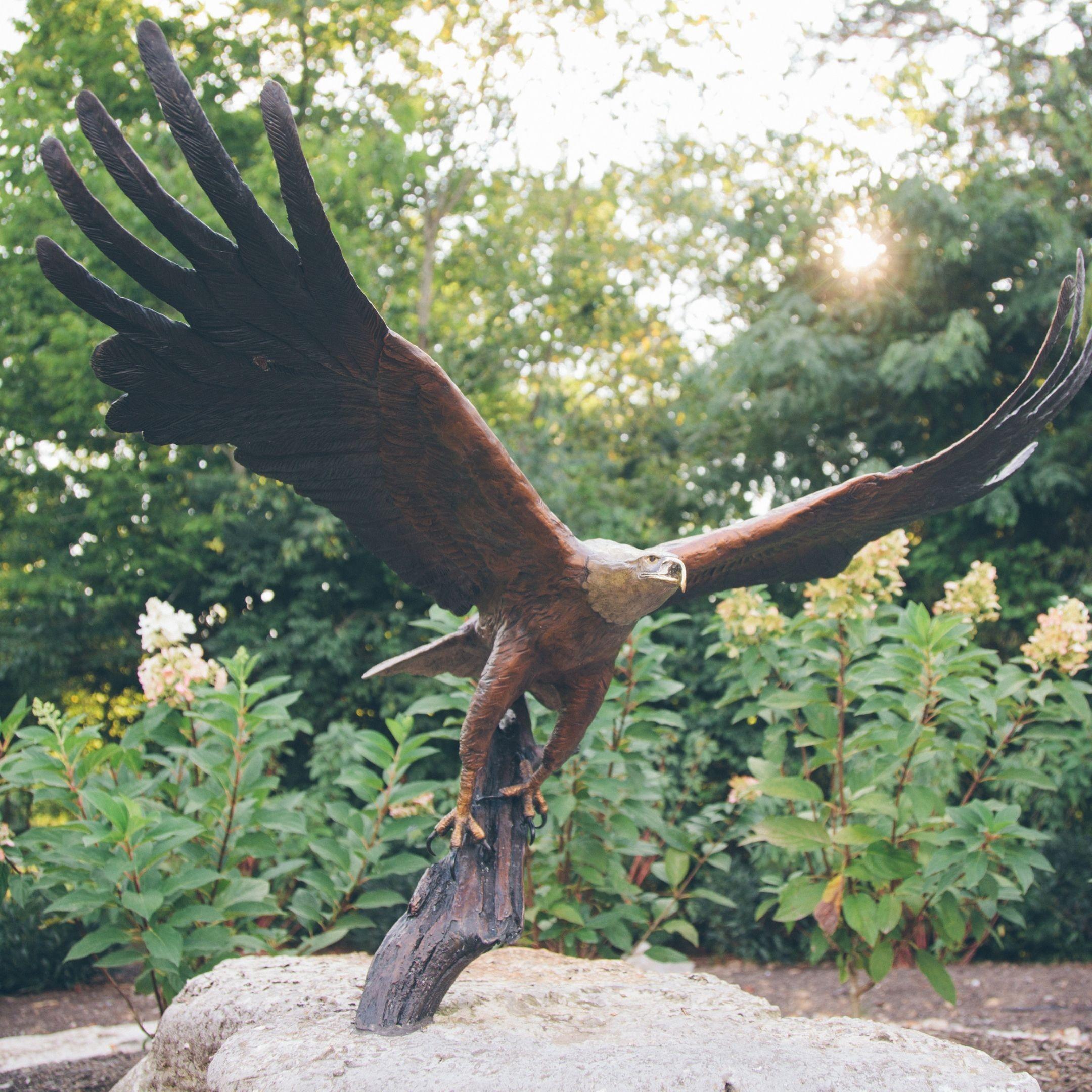 48 Days Eagles for Entrepreneurs