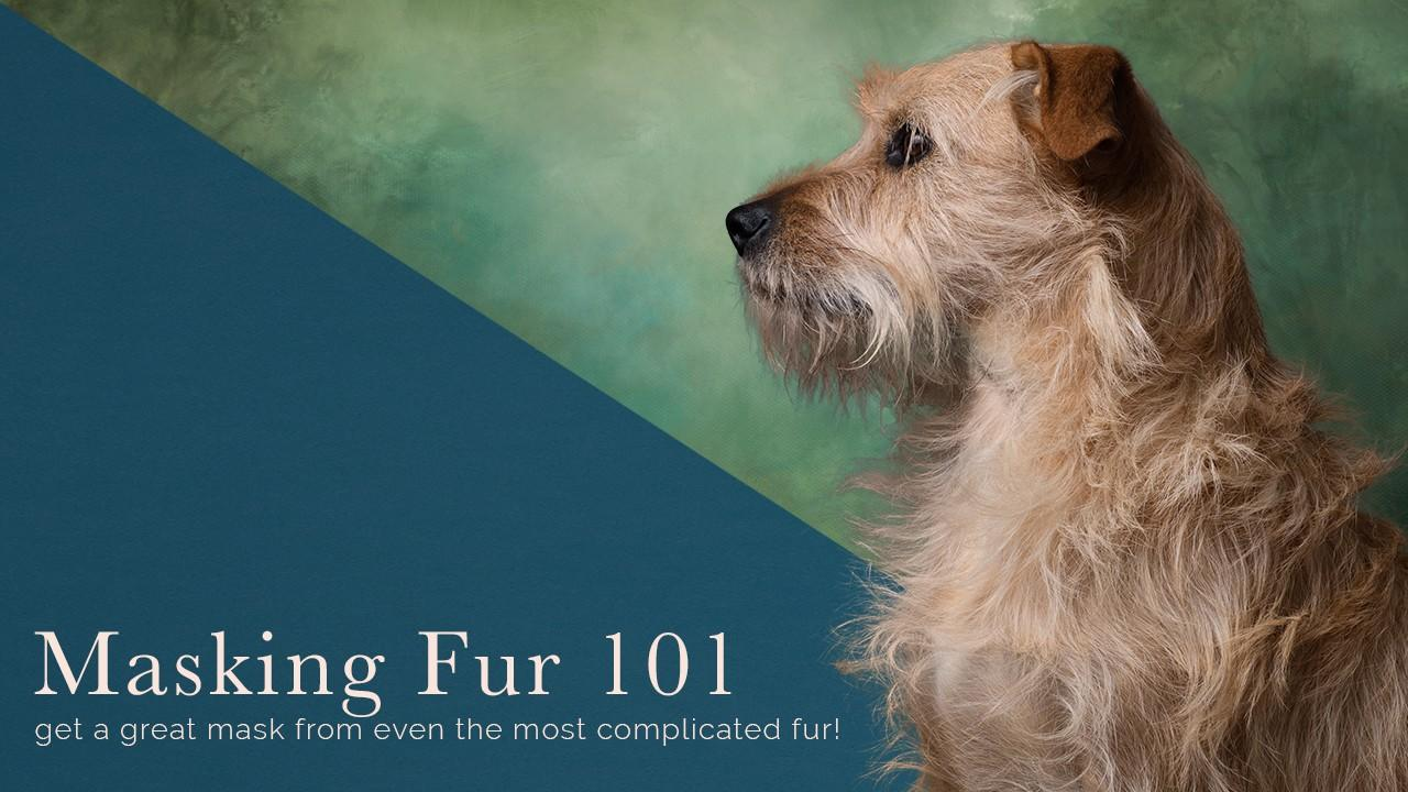 Masking Fur in Photoshop