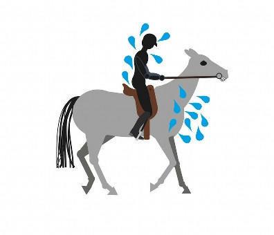 Horse Riders Mechanic riding too hard
