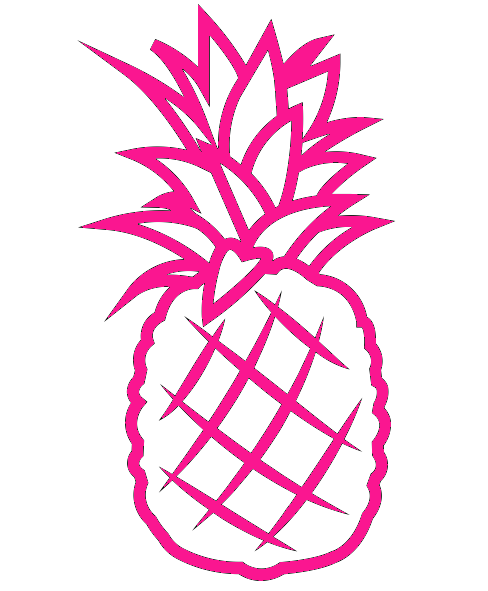 HOT PINK PINEAPPLE