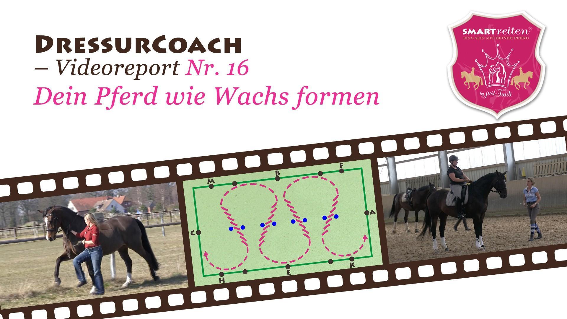 Dein Pferd formen wie Wachs