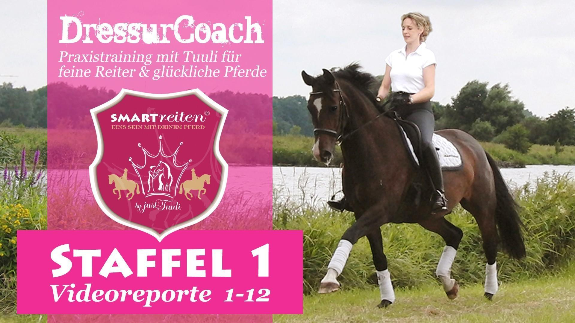 DressurCoach Staffel 6