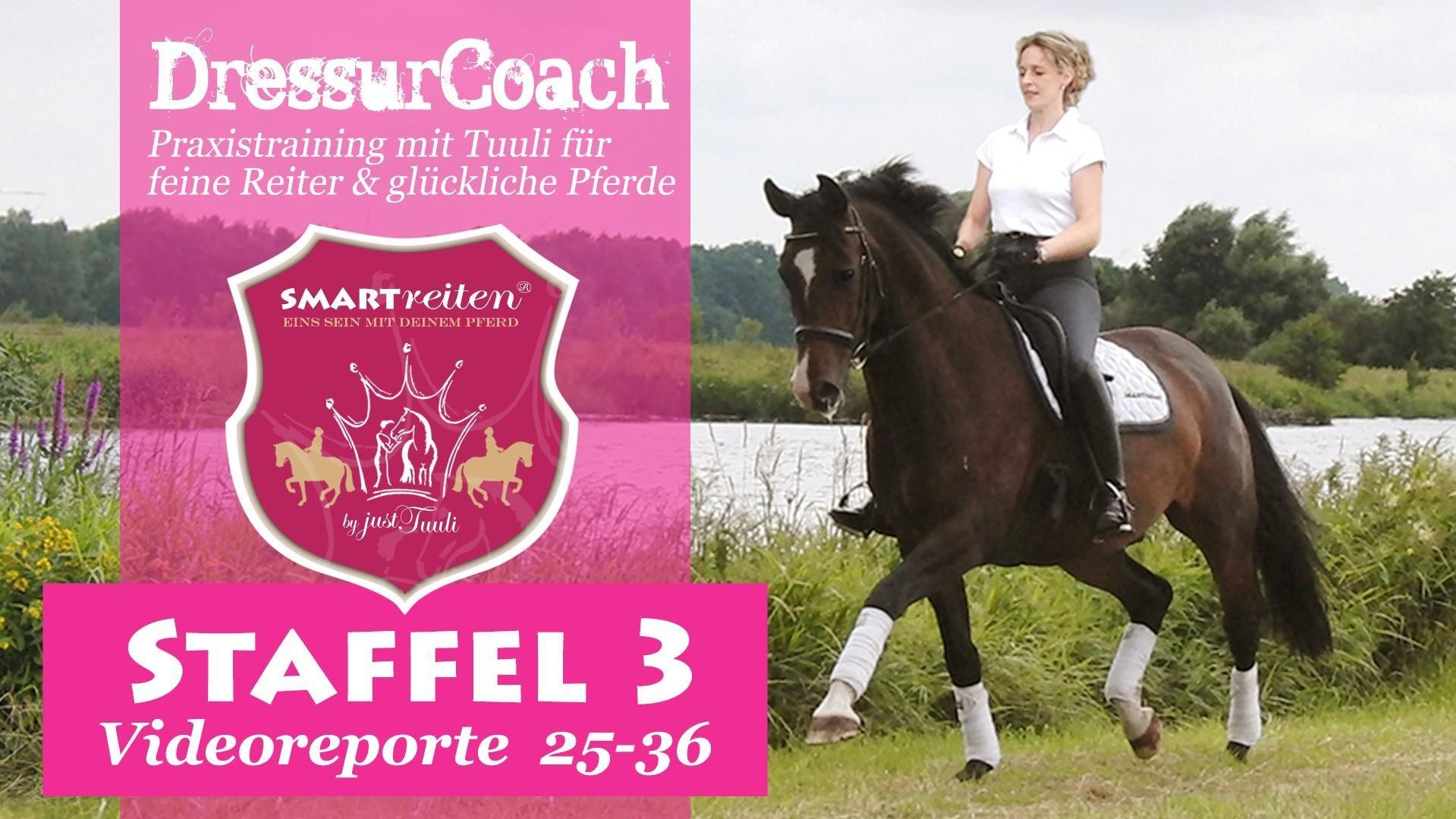 DressurCoach Staffel 3