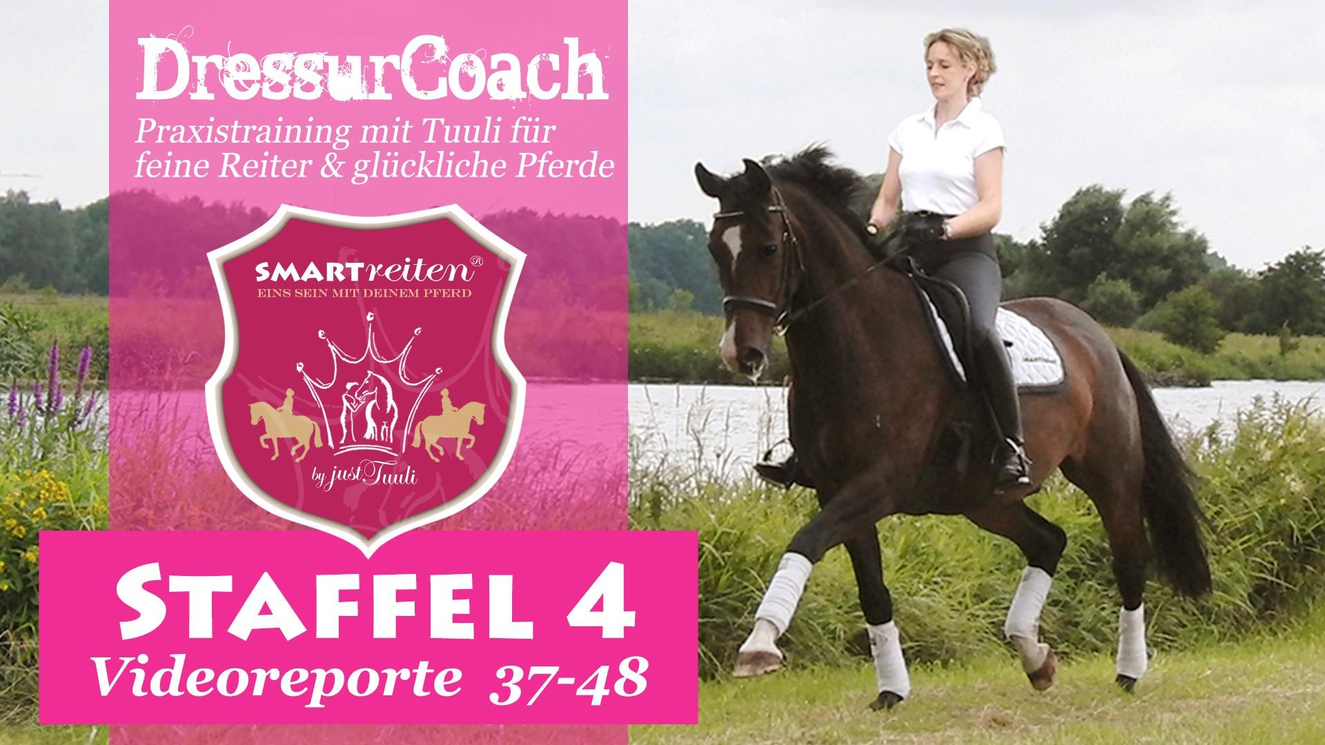 DressurCoach Staffel 4
