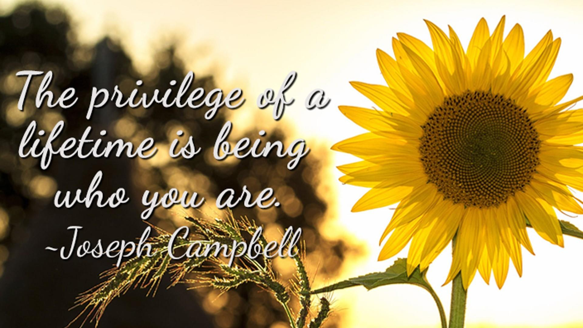 Joseph Campbell Quote - The privilege of a lifetime is being who you are
