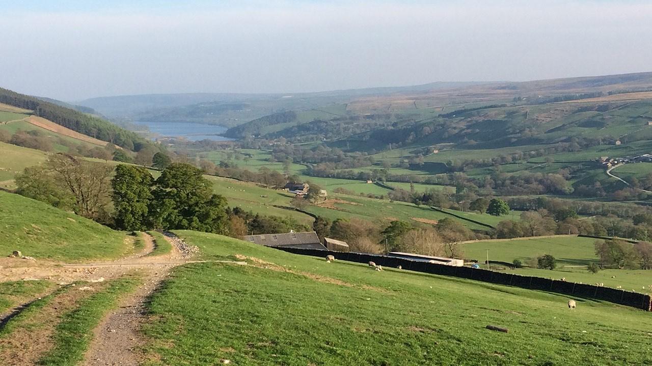 View across Nidderdale