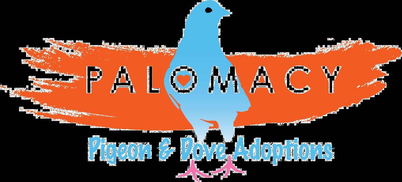 palomacy logo