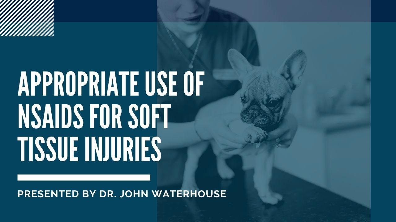 Appropriate Use of Nsaids For Soft Tissue Injuries