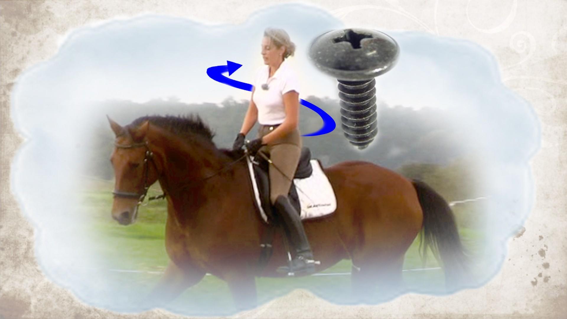 Reiterstammtisch
