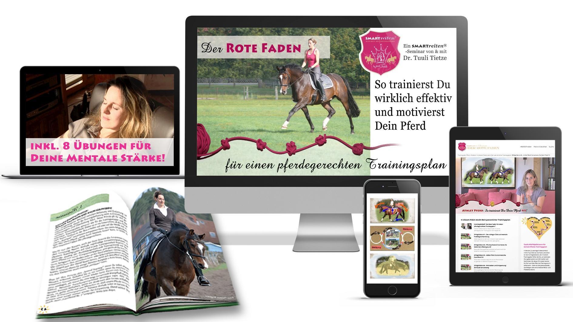 Der Rote Faden für einen pferdegerechten Trainingsplan