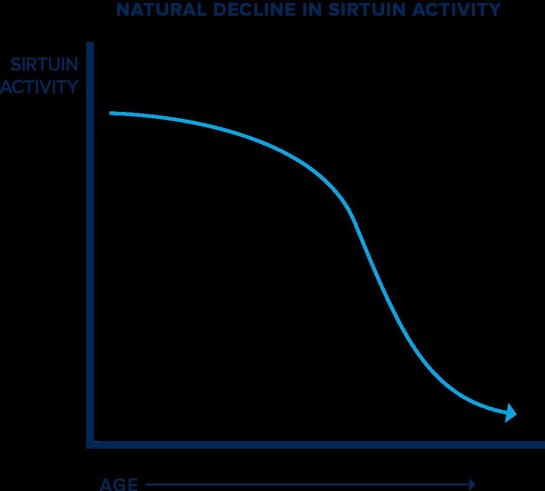 Sirtuin Activity