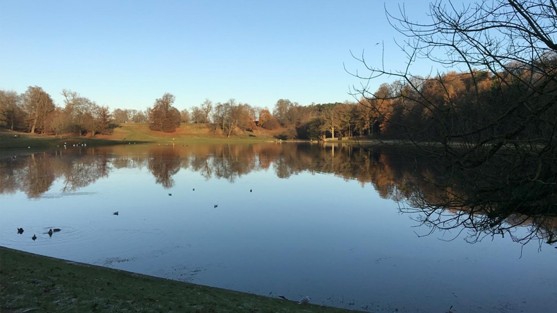 Reflections on the water at Studley Royal