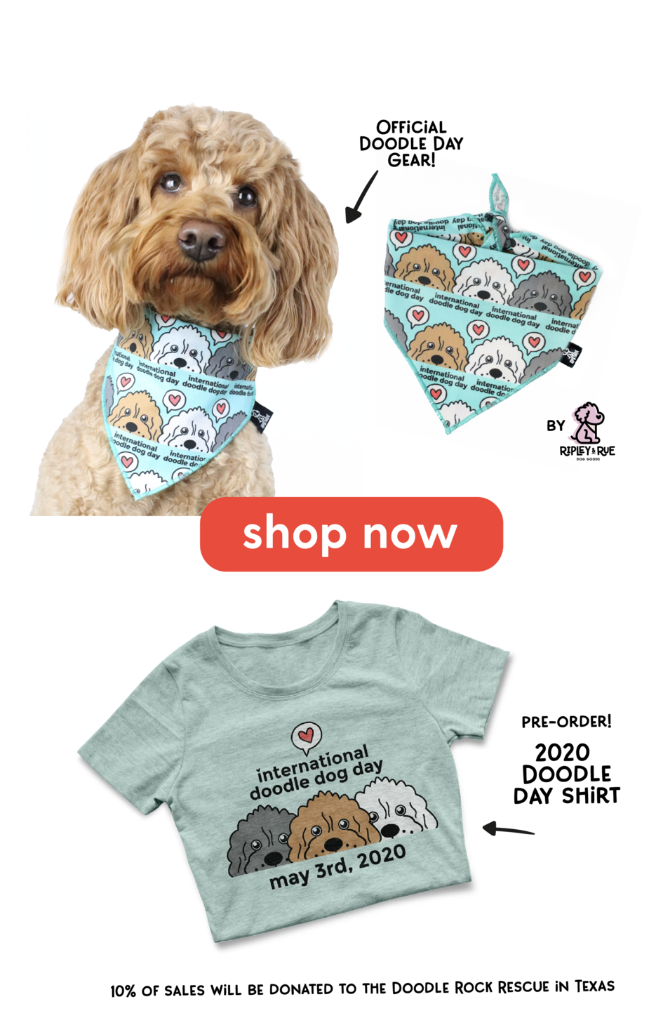 international doodle dog day gear