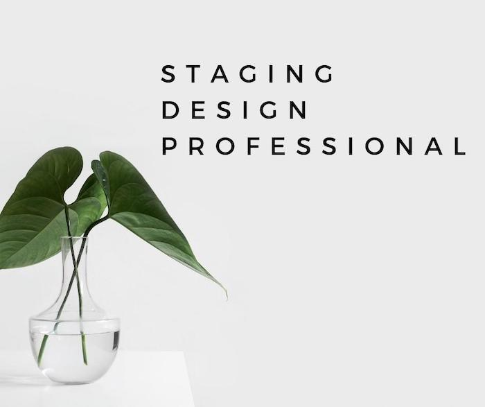 Staging Design Professional