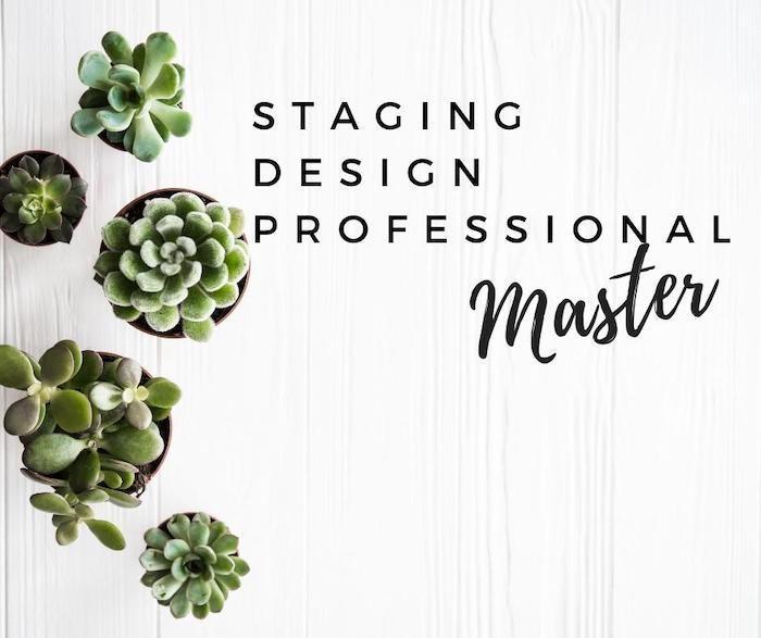 Staging Design Professional Master