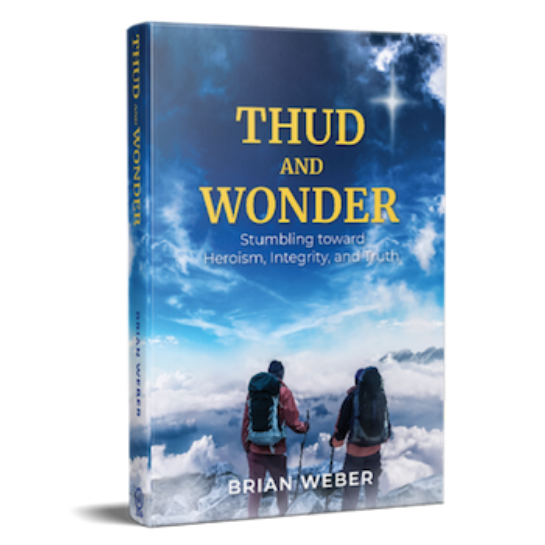Thud and Wonder by Brian Weber