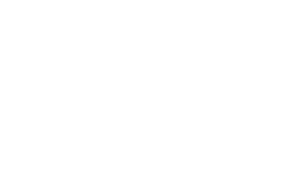 Jade Simmons 2020 Presidential Candidate