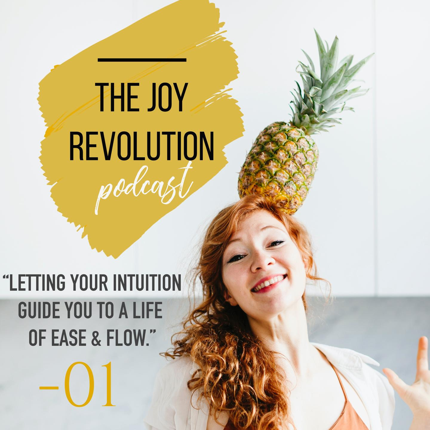 The Joy Revolution Podcast - Isabelle Ysebaert