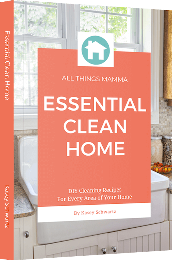 Essential Clean Home eBook
