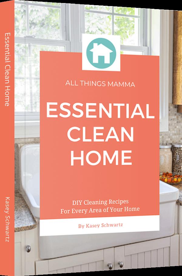 Essential Clean Home eBook