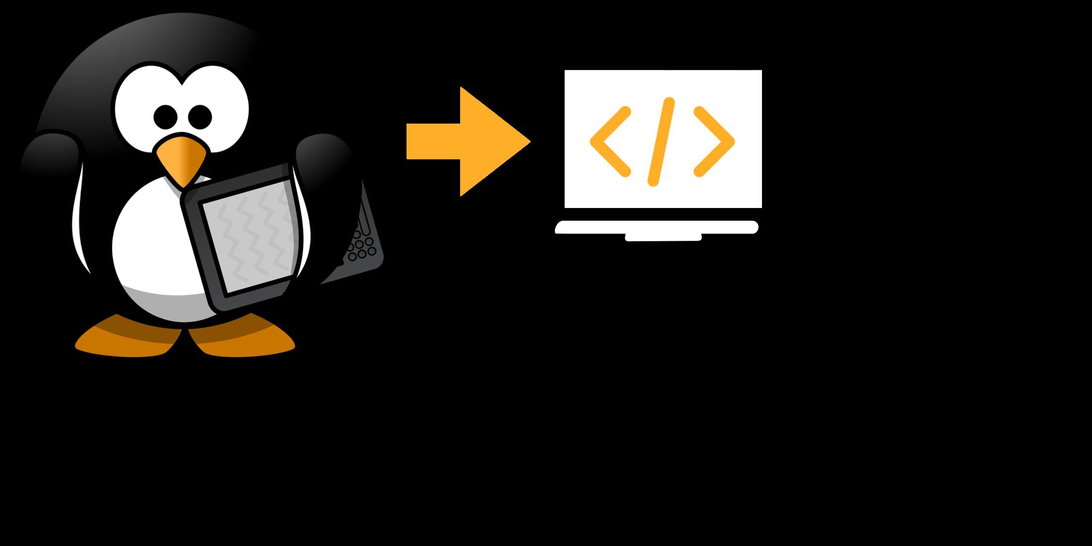 Teaching Coding