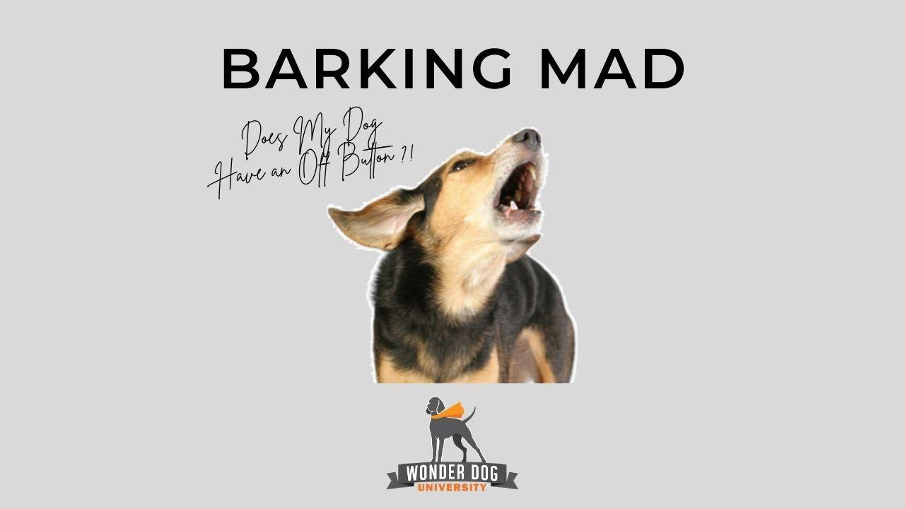 Barking Mad E-Book