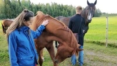 Being with horses. Movingness teacher training