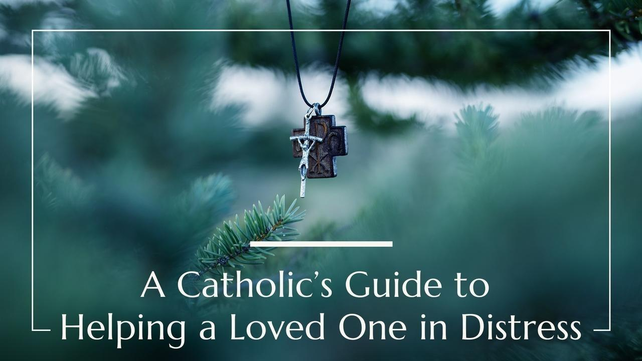 Catholic's Guide to Helping a Loved One in Distress, mental health