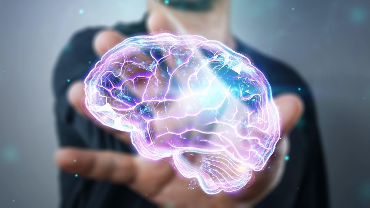 Brain Health & Performance