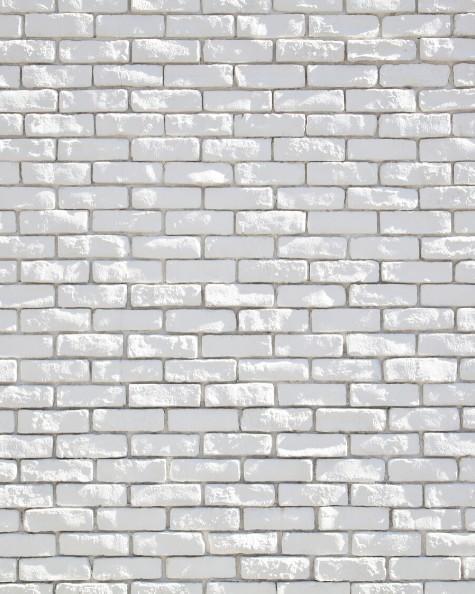 White Brick Image