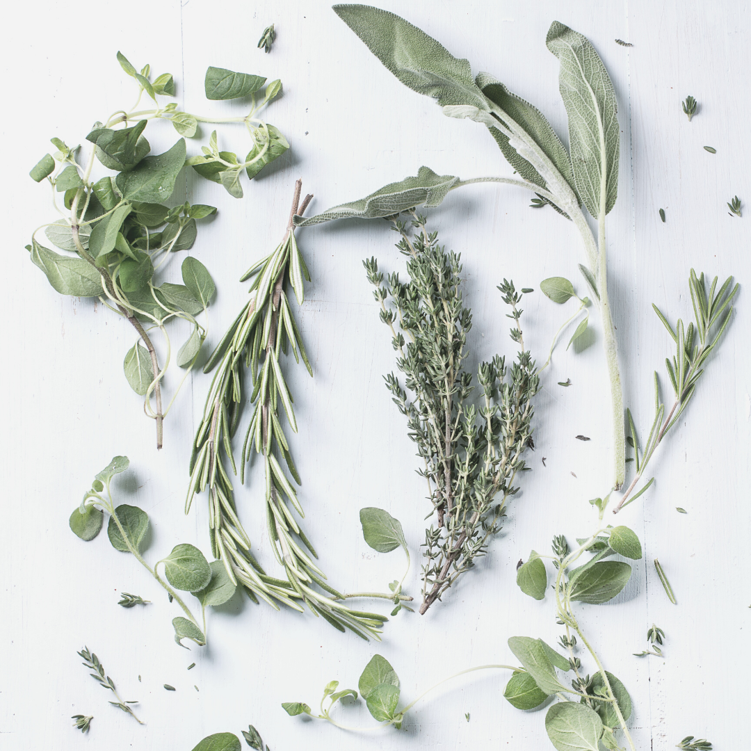 Herbs Layout
