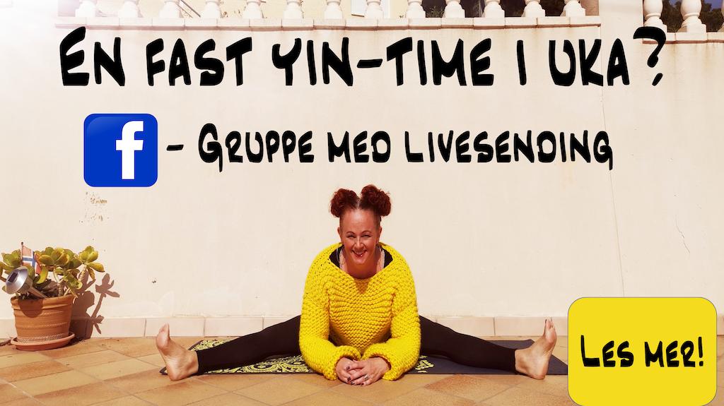 Yin yoga med Ane bilde