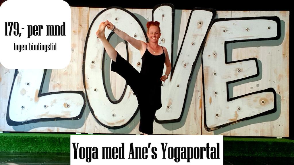 Yogaportalbilde