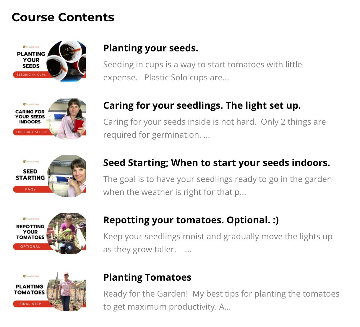 Growing Tomatoes from Seed- seed starting lessons