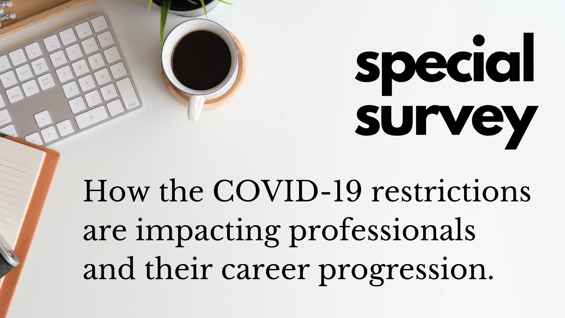 Special Survey Job Hunters COVID-19