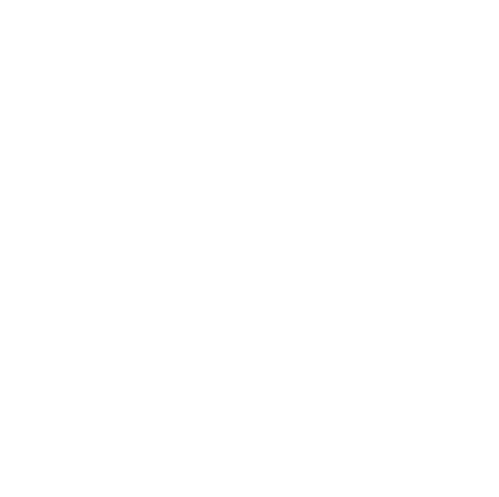 Success Stories Logo In White