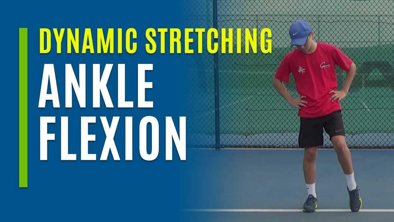 Ankle Flexion