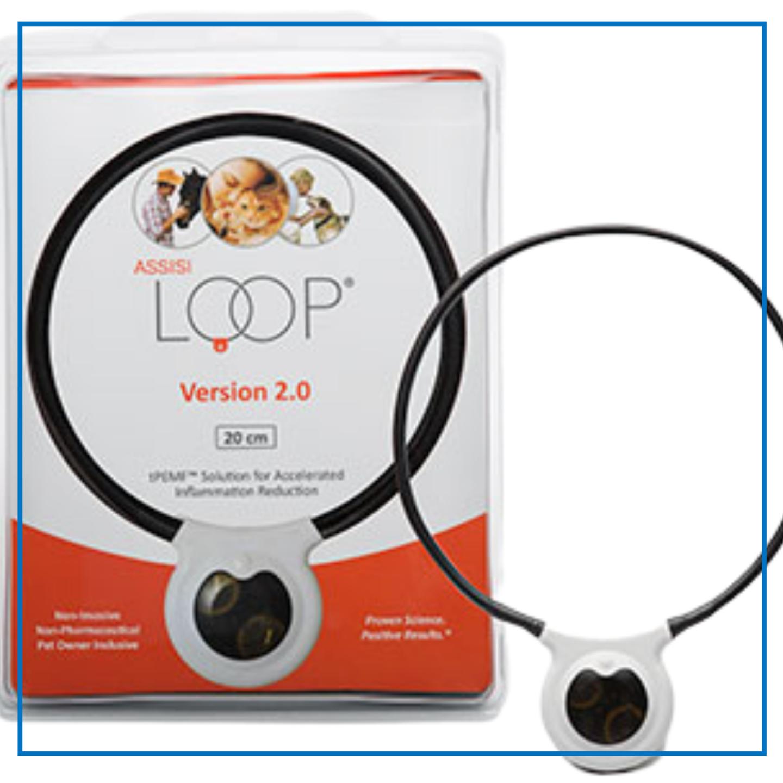 Assissi Loop