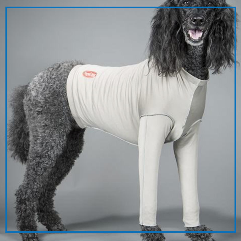 Surgi-Sox Forelimb Leggings (DogLeggs)