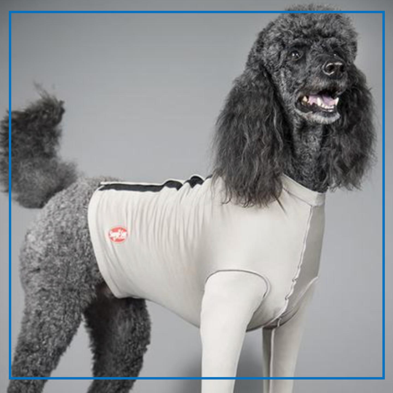 Surgi-Sox Forelimb Leggings Velcro (DogLeggs)
