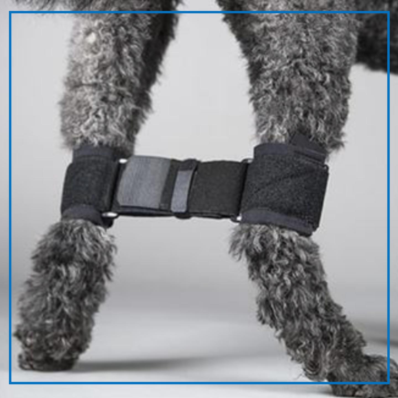 DogLeggs (Rear Legs Hobble System)