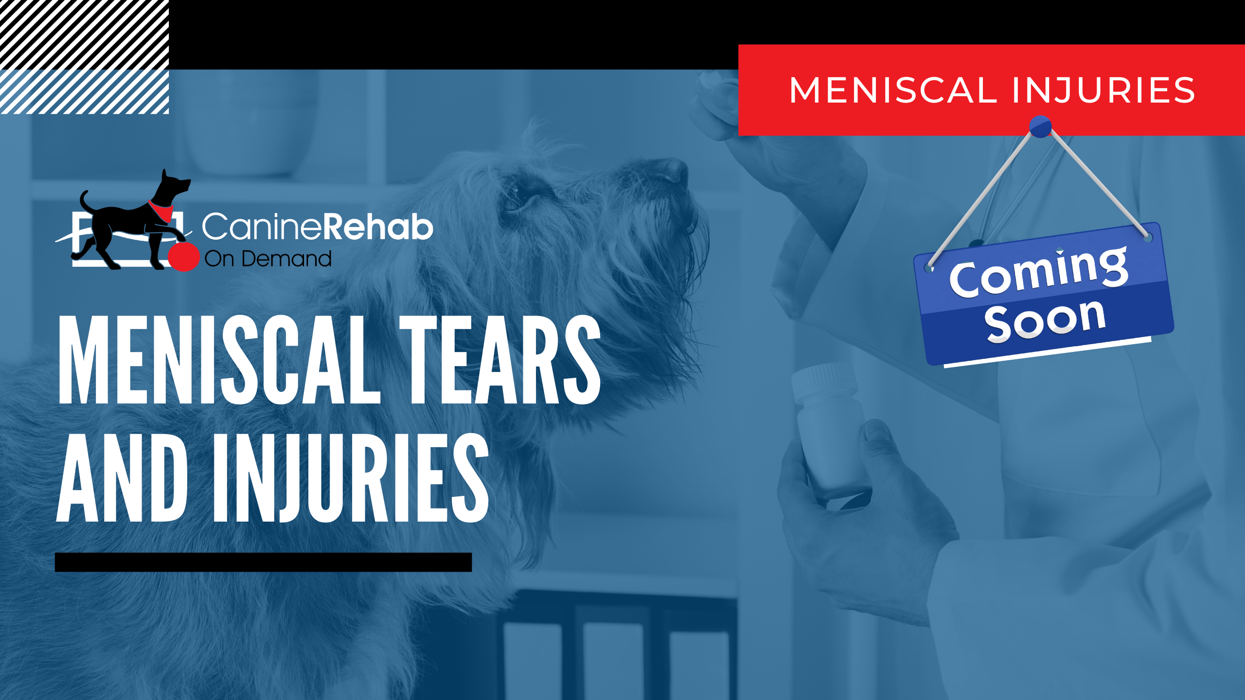 Meniscal Tears and Injuries Coming Soon