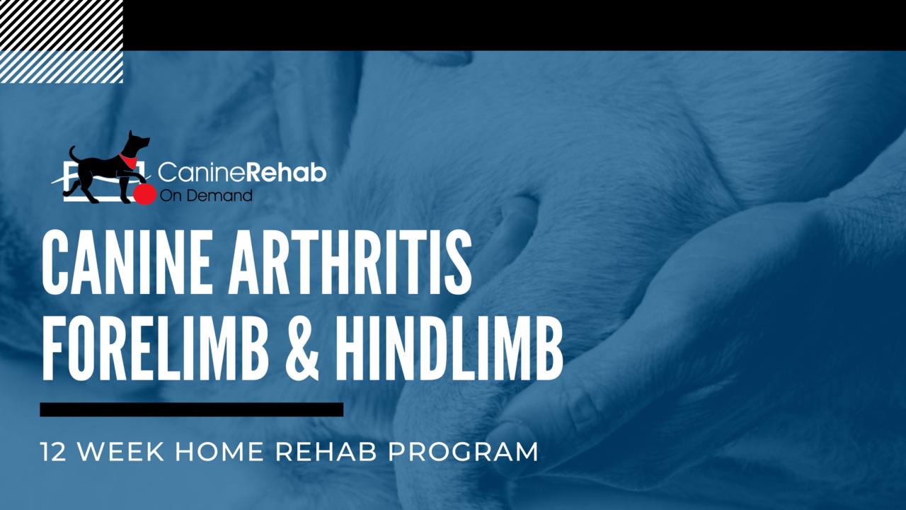 Canine Arthritis 12 Week Home Rehab Program